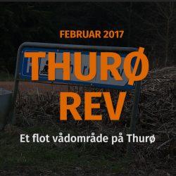 Thurø Rev video - video fra et flot vådområde på Thurø.
